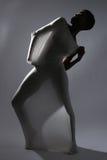 Shapely женщина в творческой ткани света и лайкра стоковые фотографии rf