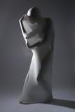 Shapely женщина в творческой ткани света и лайкра стоковое фото