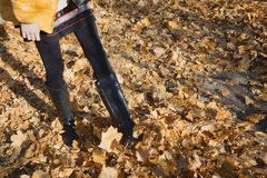 Shapely female legs walking on autumn yellow foliage Stock Images