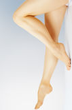 Shapely legs Stock Photos