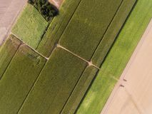 Shapes in the field, Richarville. Essonne, France royalty free stock photo