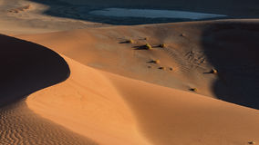 Shapes in the sand dunes, Sossusvlei, Namibia Stock Photography