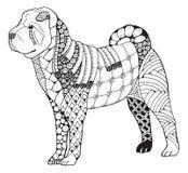 Shar pei dog zentangle stylized, vector, illustration, freehand Stock Photos