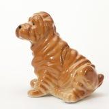 Shar pei puppy Stock Image