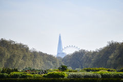 Shard with London Eye Royalty Free Stock Photography