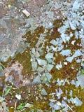 Shards του σπασμένου γυαλιού στο έδαφος στοκ φωτογραφίες