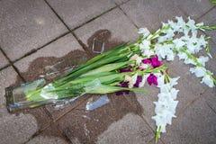 Shards of a broken vase Royalty Free Stock Image