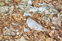 Shards of glass Stock Images