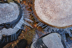 Shards of ice grow outward on river rocks. Royalty Free Stock Photography