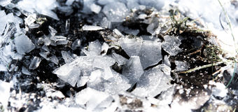 The shards of ice. In the sunlight on a frosty morning Royalty Free Stock Photography