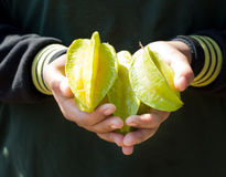 Share the Star fruit. Stock Photos