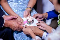 Share wedding cup cake. ceremony of chinese culture wedding, serve tea cup to bride and groom royalty free stock photo