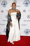 Shari Belafonte Royalty Free Stock Photo
