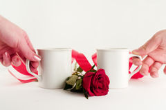 Sharing. Male and female hands holding white mugs, with rose and red ribbon, isolated on white background Stock Image