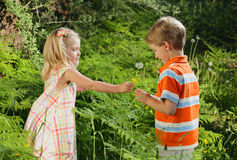 Sharing. Cute little Caucasian girl sharing wildflowers with her brother in nature Royalty Free Stock Photo