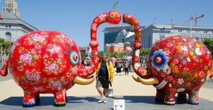 Sharing elephant Stock Photo