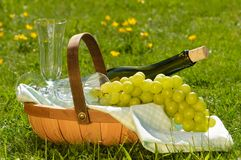 Sharing a Glass of Wine Royalty Free Stock Image