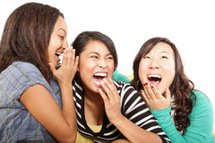 Sharing the news. Three girls hanging out and laughing together Royalty Free Stock Image
