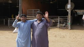 Sharjah, UAE - January, 2018: portraits two hagging men and waving hand for greet camera. Smiling faces arab men looking. Into camera in cattle market in stock video footage