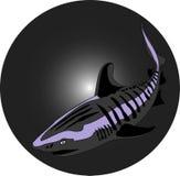 Shark. Illustration of Shark in black and white stock illustration