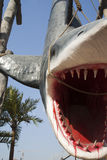 Shark. A large  model Royalty Free Stock Images