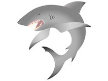 Shark. Illustration of a shark. Eps file included Stock Images