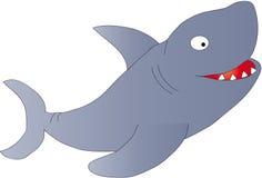 Shark stock photos
