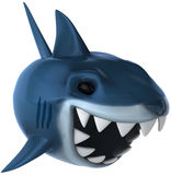 Shark. Fun shark, 3d generated picture Royalty Free Stock Photo