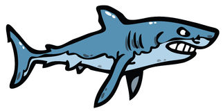 Shark. Angry shark illustration of animal Royalty Free Stock Photo
