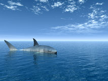 Shark. Big shark at sea - digital artwork Royalty Free Stock Images