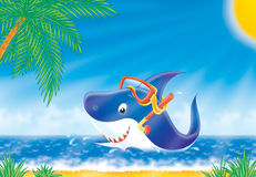 Shark. Illustration Stock Photo