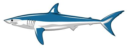 Shark. Abstract vector illustration of shark Stock Photo