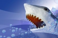 Shark. A shark rising from waters with mouth open and teeth visible royalty free stock photos