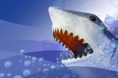 Free Shark Royalty Free Stock Photos - 7283398