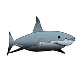Shark. Set against a white background Stock Images