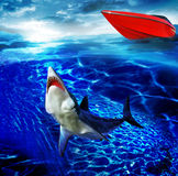 Shark. A shark looks to the surface as it rises from the bottom of the ocean. A red speed boat sitting calmly on the ocean surface stock photo