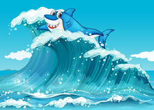 A shark above the big waves. Illustration of a shark above the big waves Royalty Free Stock Photography
