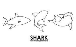 Shark alert Royalty Free Stock Image