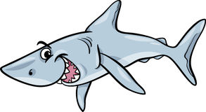 Shark animal cartoon illustration Royalty Free Stock Images
