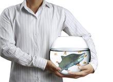 Shark in aquarium hand Stock Photo