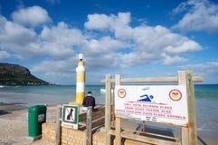 Shark Attack Beach Stock Photo