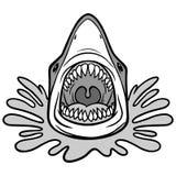 Shark Attack Bite Illustration Royalty Free Stock Photos