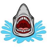 Shark Attack Bite Royalty Free Stock Image