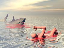 Shark attack - 3D render. One wounded man trying to escape from shark attack in the ocean Stock Photography
