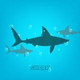 Shark background Stock Photography