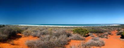 Shark bay. An image of the beautiful Shark Bay in Australia Royalty Free Stock Photography