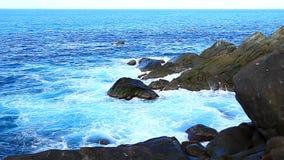 Shark Bay National Park Tortola stock footage