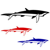 Shark,  black and white outline. Royalty Free Stock Image