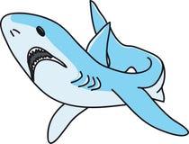 The shark Stock Photos