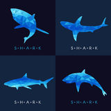 Shark - Blue low poly vector set Design Stock Photo